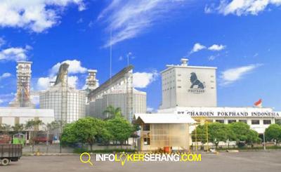 Lowongan Kerja Junior Analyst PT Charoen Pokphand Indonesia Tbk Serang