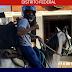 Hamburgueria de Brasília usa cavalos em delivery por falta de combustível