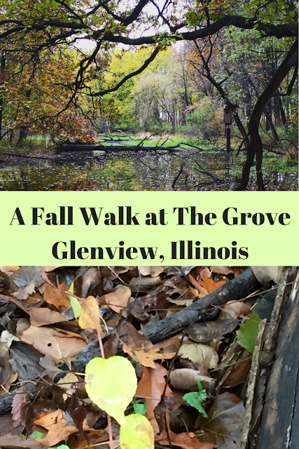 A fall walk in the forest at The Grove in Glenview, Illinois