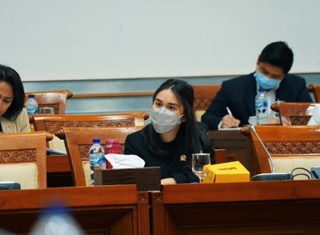Setuju Revisi UU ITE, Legisaltor Muda Ini Soroti Beberapa Pasal