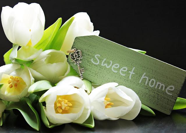 fiori primavera in casa