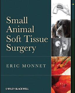 Small Animal Soft Tissue Surgery