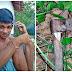 BRUTAL  Jovem é morto a golpes de machado durante bebedeira no Piauí