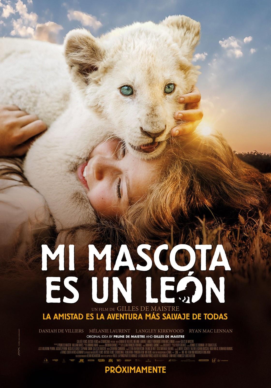 Mi Mascota Es Un León Llegará Pronto A Los Cines
