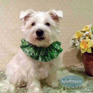 Shamrocks and Polka Dots Dog Scrunchie Ruffle
