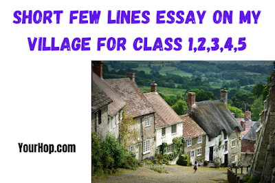 My Village Essay