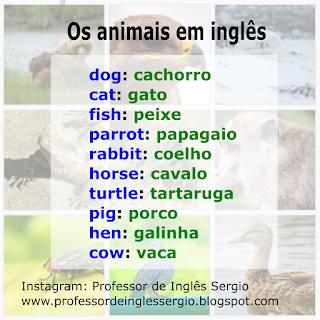 Os animais em espanhol, Espanhol, Dicas de Inglês, Inglês Básico, Inglês para Iniciantes, Inglês Sozinho, Vocabulário em Inglês