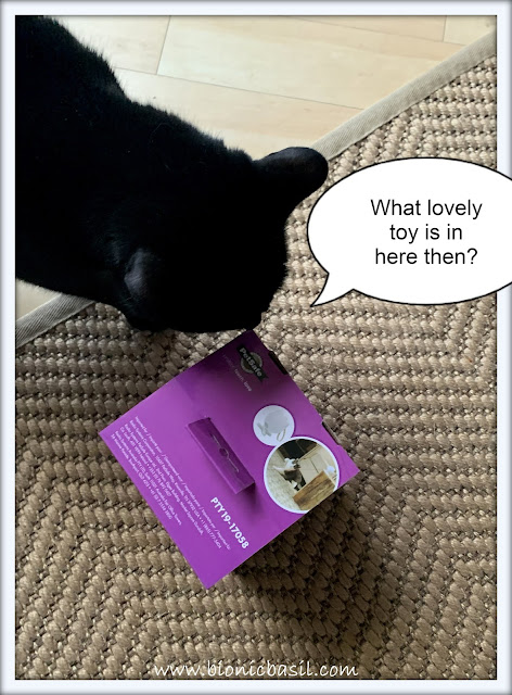 What's In The Box ©BionicBasil® PetSafe Dancing Dot Laser Cat Toy with Parsley