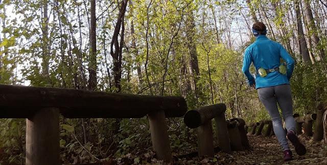 parc arbre feuilles automne coureuse course à pied