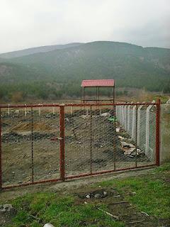 MSN Gıda Organik ceviz bahçeleri kurmaya başladı.