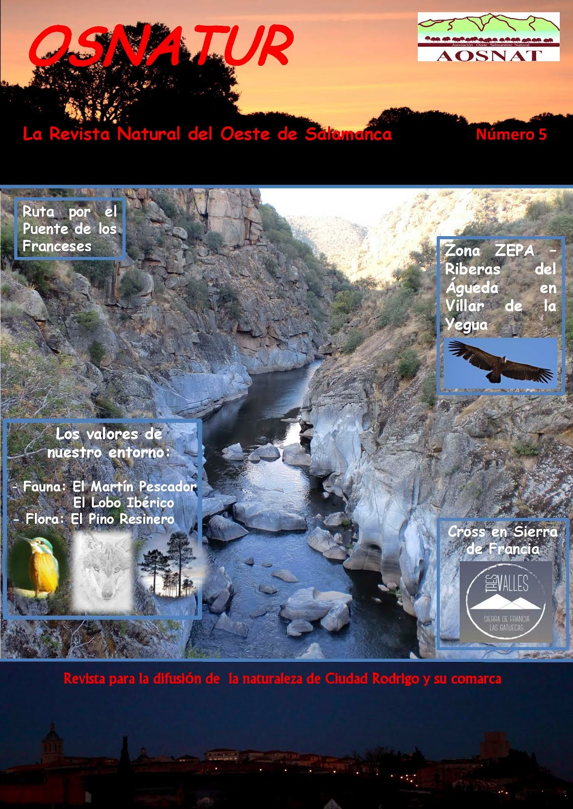 Revista Osnatur Nº 5