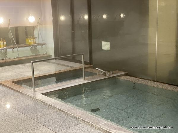 onsen bath at Hotel Jogakura in Amori, Japan