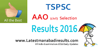 TSPSC AEE Selection List 2016, TSPSC Assistant Executive Engineers Result 2016, www.tspsc.gov.in AEE Civil Result 2016, TSPSC AEE Results on 9th March 2016