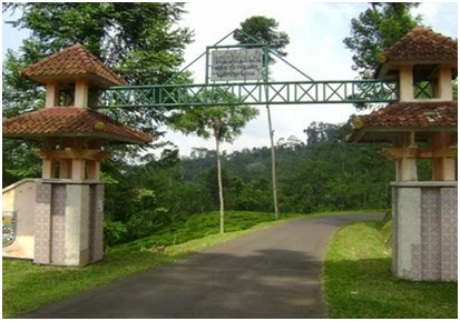 Agrowisata%2BSalak%2BSodong Objek Wisata Di Batang Jawa Tengah yang Lagi Naik Daun
