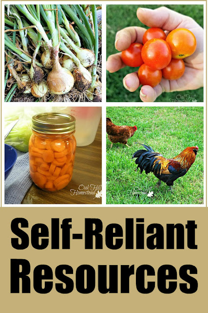 Are you interested in living a more sustainable and self-reliant lifestyle? You'll appreciate this round-up of homesteading and self-reliant information: Self-reliance, food preservation, gardening, foraging, chickens, kitchen skills and more!