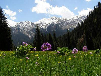 kyrgyzstan tours 2014, kyrgyzstan art craft