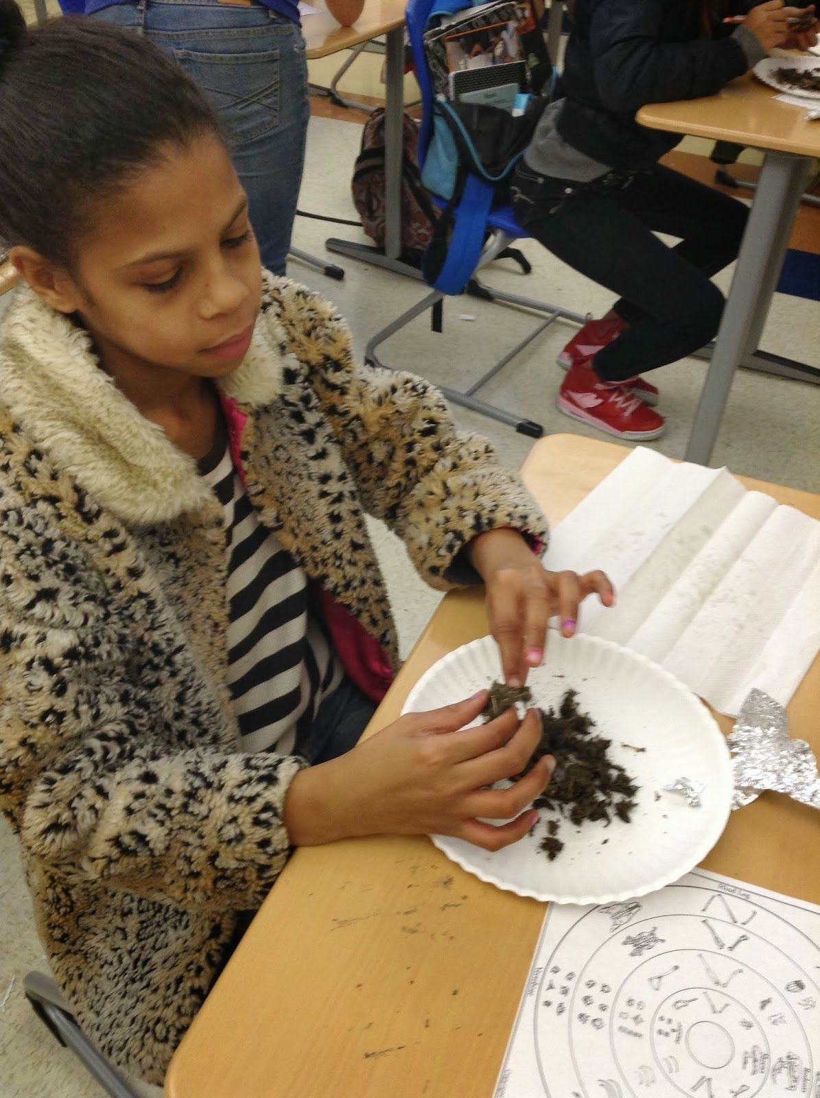 Urban Naturalists At Nathan Bishop Middle School