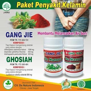 Obat Alami Sebagai Pencegahan Penyakit Gonore