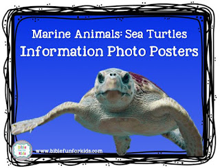 http://www.biblefunforkids.com/2018/02/god-makes-ocean-sea-animals-sea-turtles.html