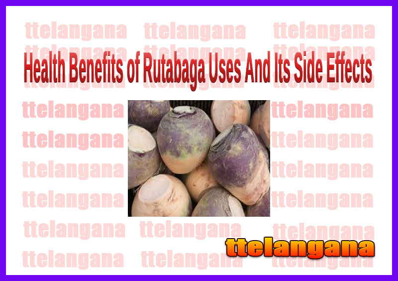 Health Benefits of Rutabaga Uses And Its Side Effects