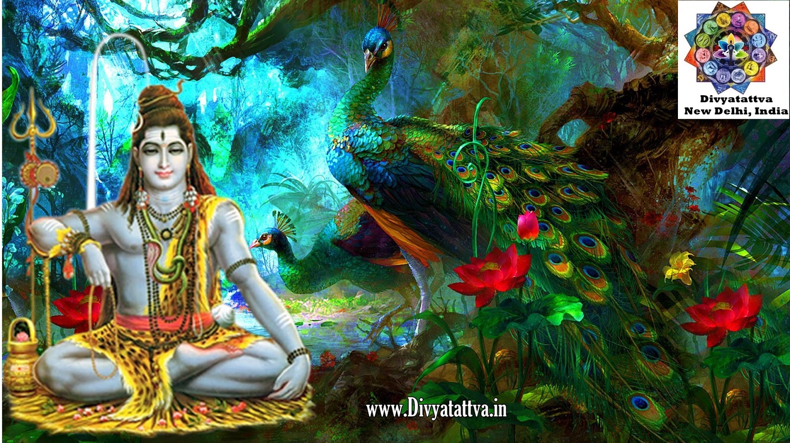 Divyatattva Astrology Free Horoscopes Psychic Tarot Yoga Tantra Occult Images Videos Lord Shiva Hd Wallpapers Full Size Aum High Resolution Backgrounds Photo