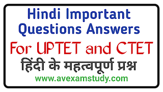 Hindi Important Questions Answers For UPTET and CTET