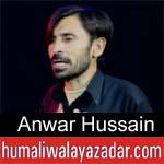 https://www.humaliwalyazadar.com/2018/09/anwar-hussain-nohay-2019.html