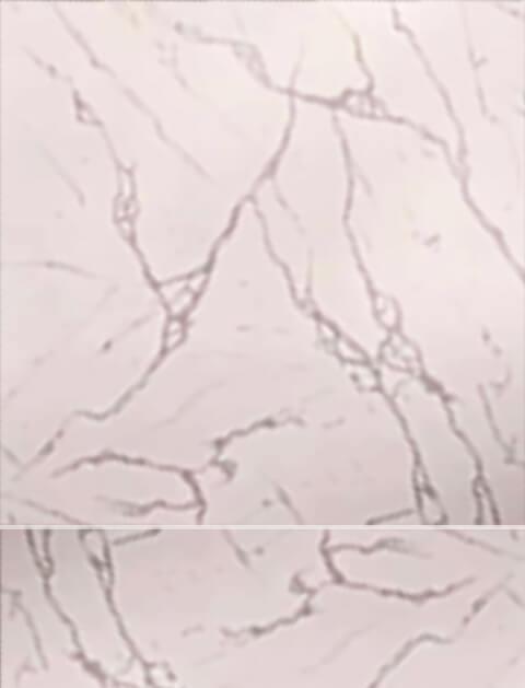 سيراميك أرضيات   40×40سم / سيراميكا كليوباترا