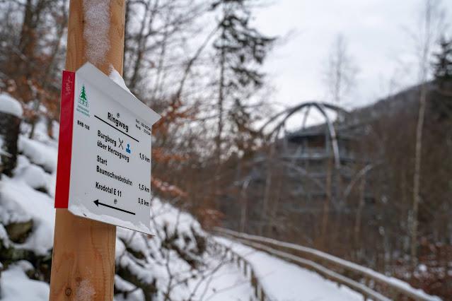 Winterwandern in Bad Harzburg | Kleiner und Großer Burgberg und Besinnungsweg | Baumschwebebahn | Wandern im Harz 21