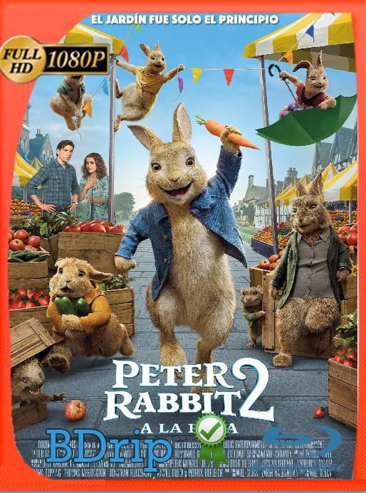 Peter Rabbit 2: Conejo en Fuga (2021) BDRip [1080p] Latino [GoogleDrive] Ivan092