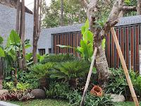 Jasa Taman Rumah di Jepara - Tukang Taman Dan Kolam Minimalis Murah Jepara