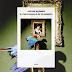 Un libro al giorno: Julian Barnes, Il pappagallo di Flaubert