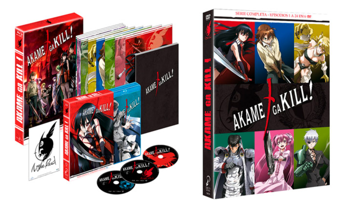 Akame ga Kill - Selecta Visión