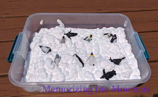 http://www.memorizingthemoments.com/2019/06/shaving-cream-and-penguins.html