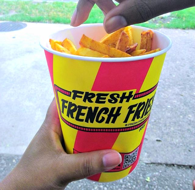 MN state fair fries