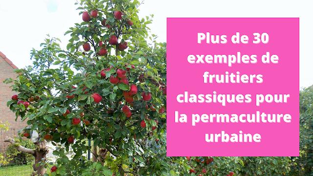 Plus de 30 exemples de fruitiers classiques pour un jardin urbain en permaculture (vidéo)
