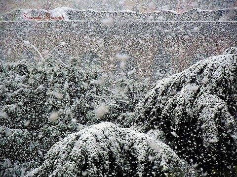 Nevicata su antiche rovine e su alberi
