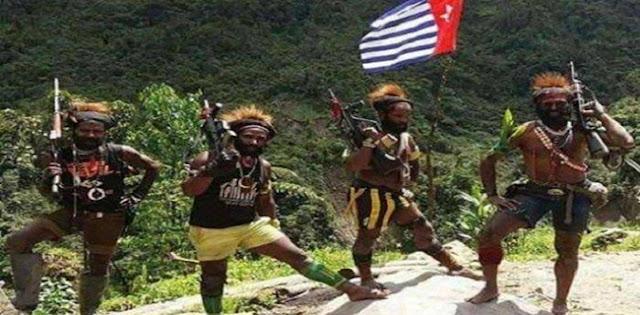 Diserang KKB, Satu Anggota TGPF Dan TNI Tertembak
