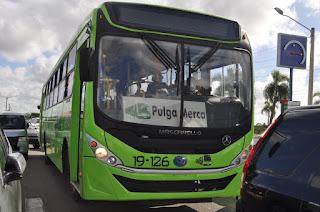 OMSA crea rutas para el Merca Santo Domingo y la Pulga