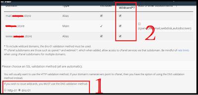 sebelum menceklist wilcard anda harus memilih DNS validation yaitu mengubah dari http-01 menjadi DNS-01 kemudian ceklist penggunaan wilcard