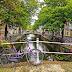Het deelvervoer van de toekomst staat in Delft