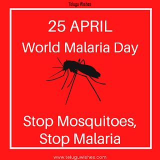 Stop mosquitoes stop malaria World Malaria Day