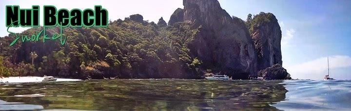 Snorkel-Nui-Beach-Phi-Phi-Tailandia