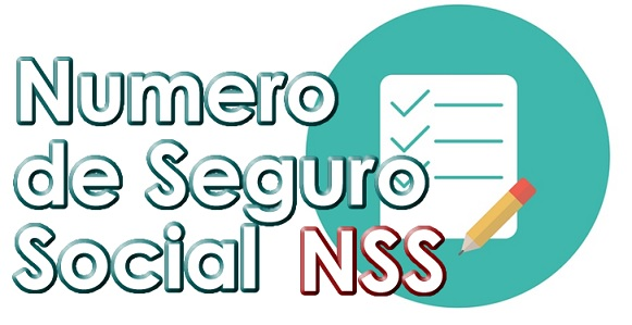 Texto en Verde que dice Numero de Seguro Social NSS