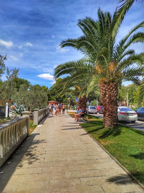 Crikvenica plamy wzdłuż drogi, drzewa palmowe, deptak