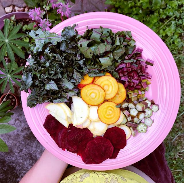 organic vegetable garden harvesting