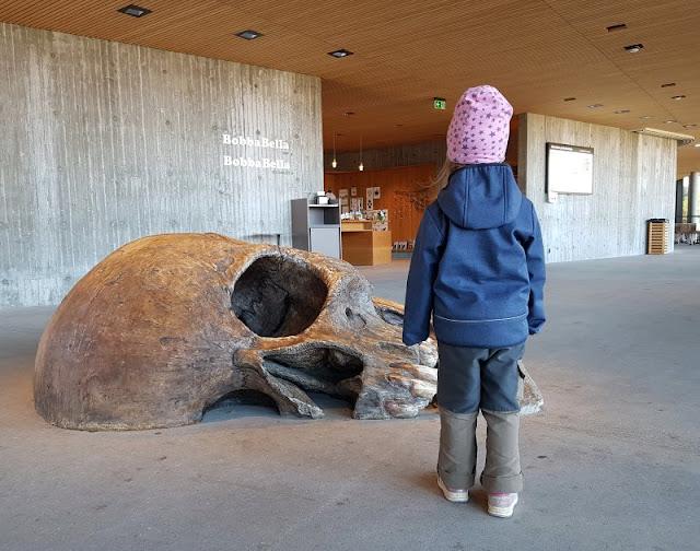 Bornholm mit Kindern im Herbst. Teil 3: 10 tolle Ausflugsziele für Familien auf Dänemarks Sonneninsel. Das neue Besucherzentrum von Hammershus vermittelt Geschichte an Groß und Klein.