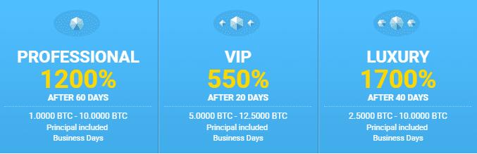 Инвестиционные планы Bitcy 2
