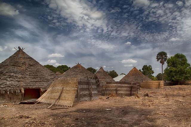 Guinea- Bissau
