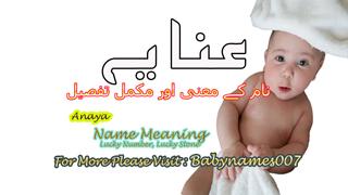 Anaya Name Meaning In Urdu - Best Muslim Girl Names - New Born Baby Name